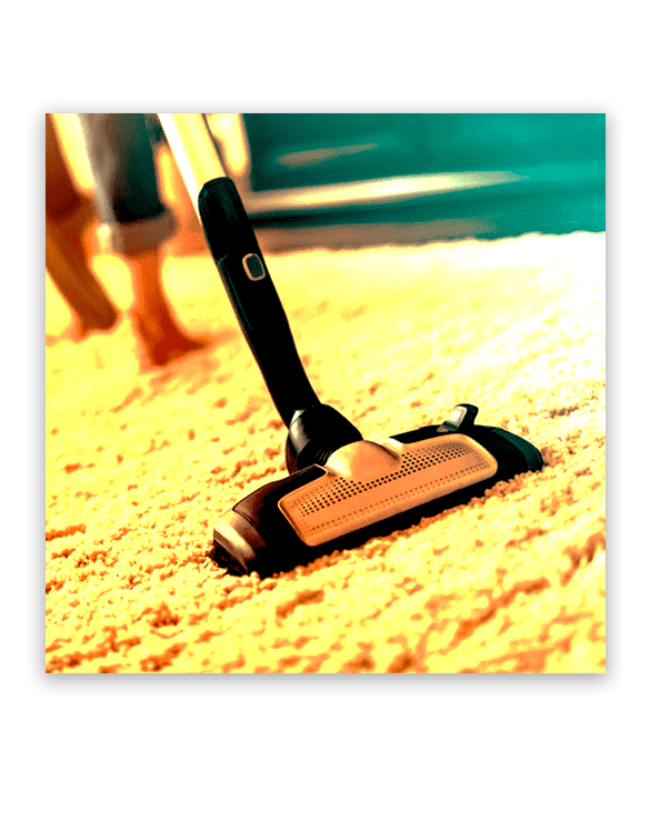 Professional Carpet Cleaning Melrose Park